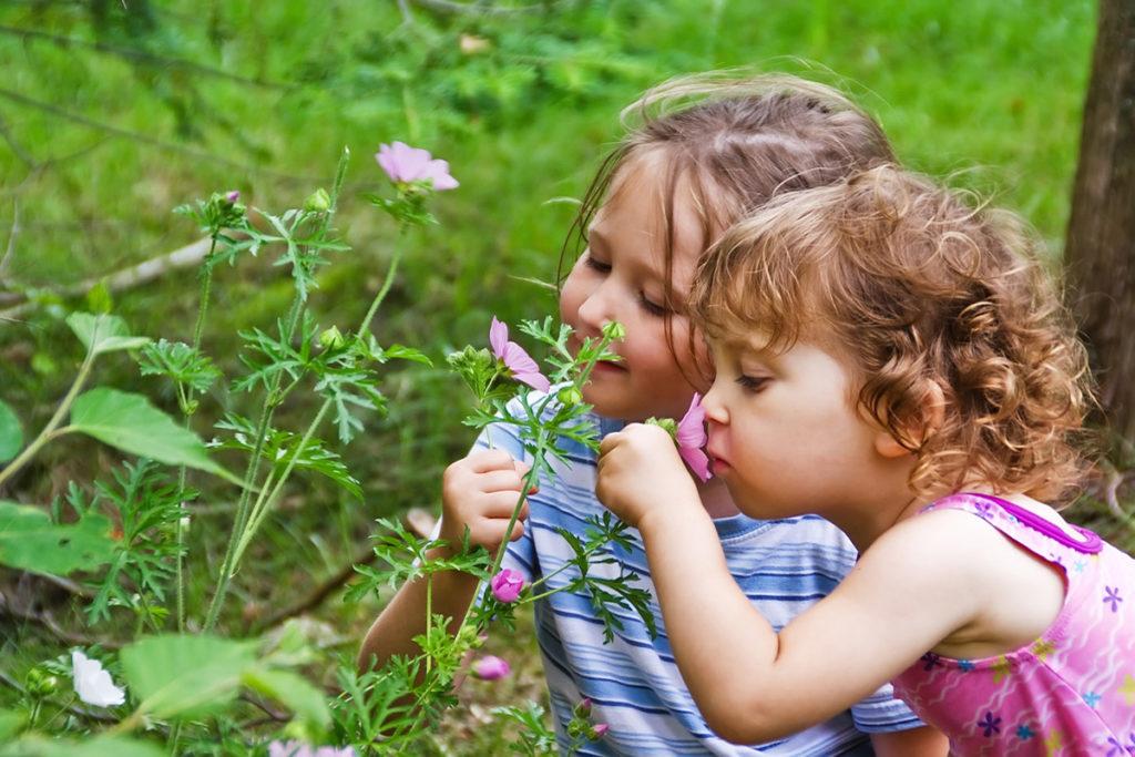 Σήμερα που τα παιδιά μεγαλώνουν με όλες τις ανέσεις επιβάλλεται να τους μάθουμε την κοινωνική αμοιβαιότητα