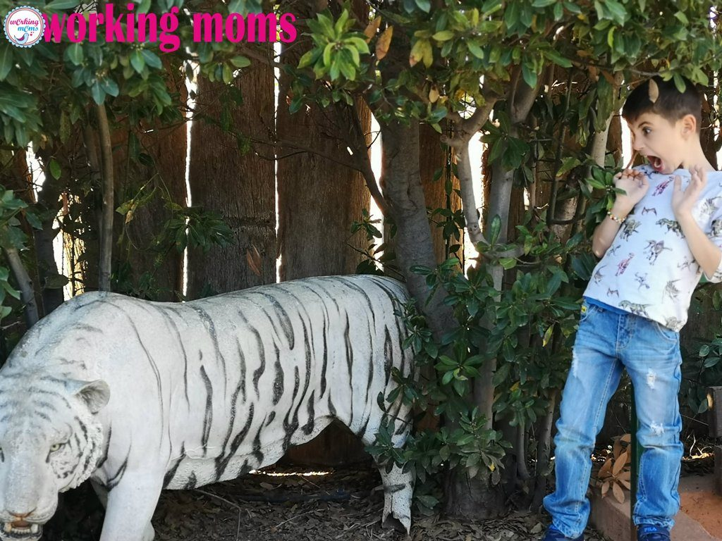 Η αξέχαστη βόλτα μας στο Αττικό Ζωολογικό Πάρκο